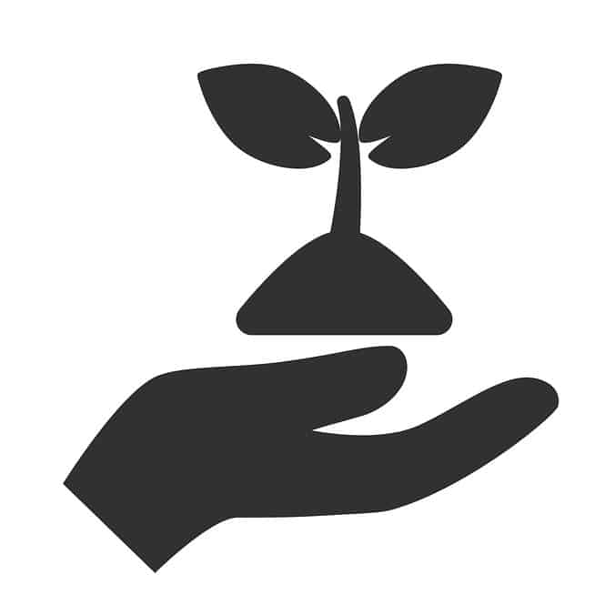 Hand holding plant in soil icon
