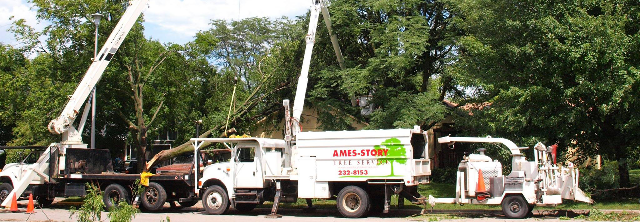 ames story tree removal trucks